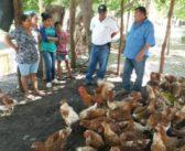 APOYANDO INICIATIVAS ECONOMICAS EN LAS COMUNIDADES DEL GOLFO DE FONSECA