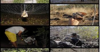 PROYECTO: Conservación y Uso Sostenible de los Recursos Naturales de los Manglares del Golfo de Fonseca, Honduras